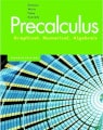 Pearson Precalculus Graphical Numerical Algebraic, 2006